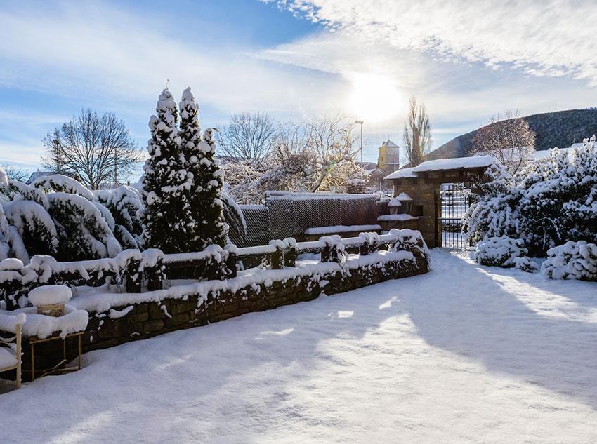 Invierno - Zona camino